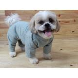 roupas de moletom para cachorro ABC
