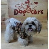 roupas para cachorro pequeno Araras