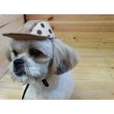 roupinhas e acessórios para cachorros Araraquara