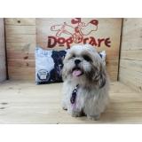 venda de lacinho de cachorro Presidente Prudente
